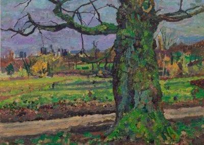 36 'Oak Tree Hampstead Heath, early spring'