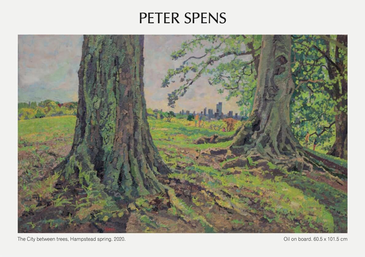 5 Peter Spens 2020 Vision Exhibition
